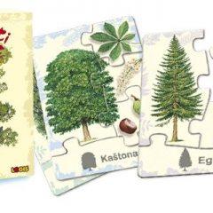 """Stalo žaidimas """"Ar pažįsti medžius?"""""""