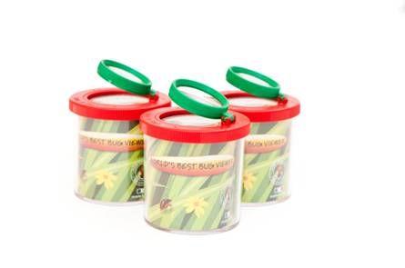 Indelis vabzdžių-augalų stebėjimui