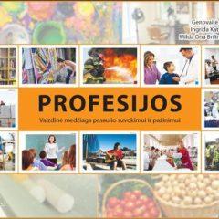 """Mokomieji plakatai """"Profesijos"""""""