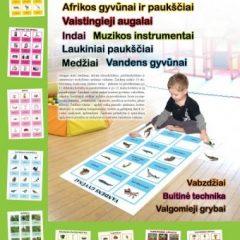 Žaisdami mokomės. Mokomasis-lavinamasis stalo žaidimas