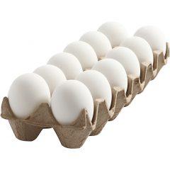 12 plastikinių baltų kiaušinių