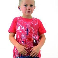 Vidaus organų liemenė