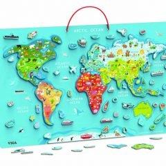 Dvipusis magnetinis pasaulio žemėlapis
